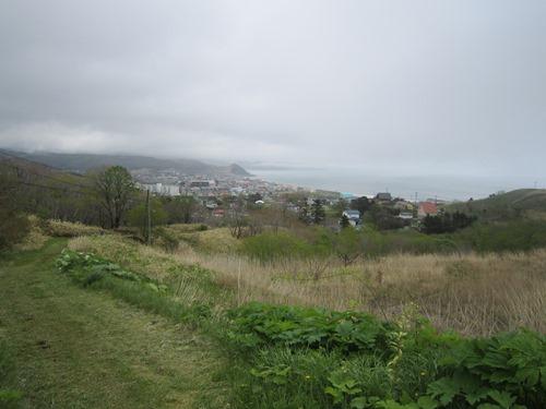 八景_丘上から大通.jpg