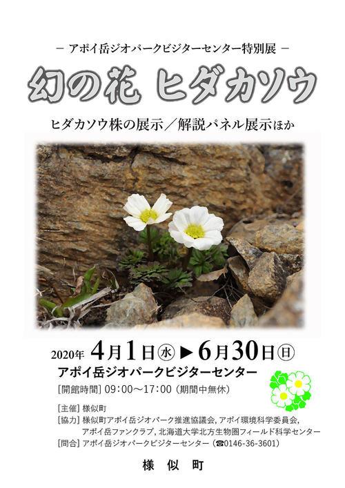 幻の花ヒダカソウ_チラシ.jpg