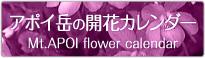 アポイ岳の開花カレンダー