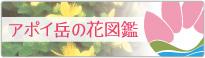 アポイ岳の花図鑑